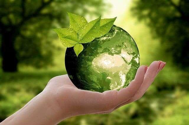 什麼是綠色印刷呢?