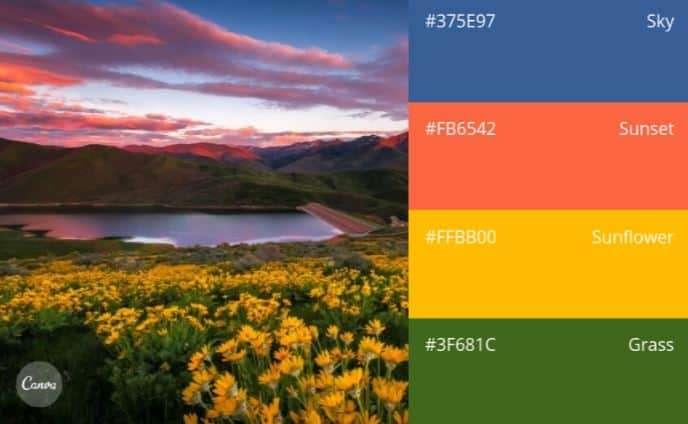 由大自然裡找包裝設計顏色靈感