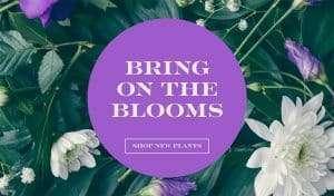 printingnews-B0001-05 paperbox好文分享-關於春季的調色板