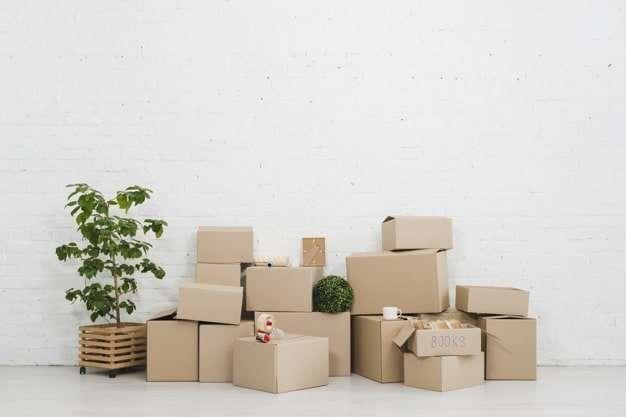 包裝設計-彩盒設計靈感